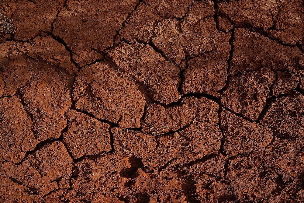 packed-earth-cracked-soil