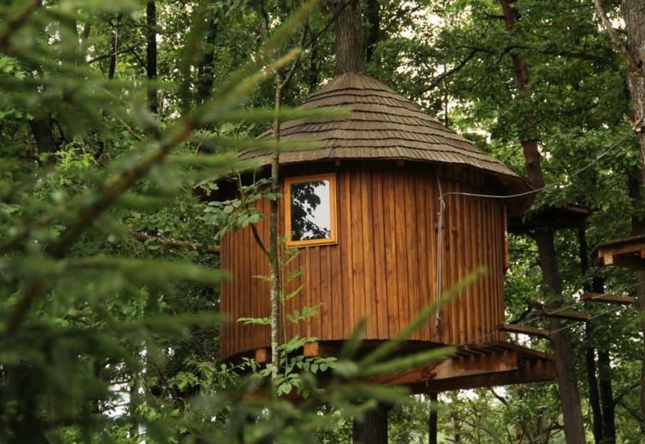 Taurių parko namelis medyje