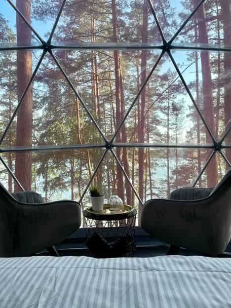 Skywoods kupolas. Vaizdas iš vidaus