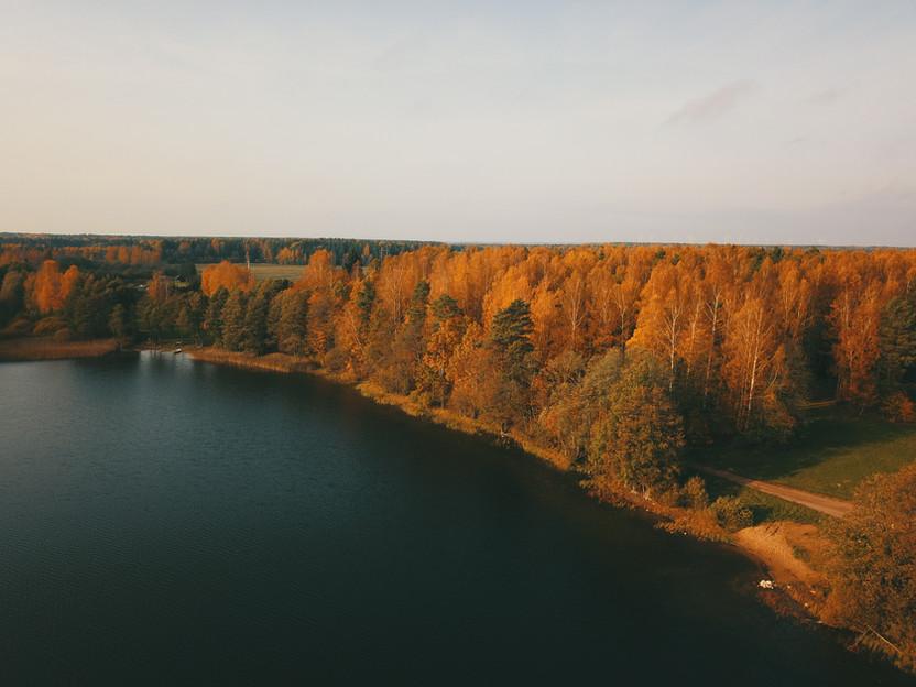 kalniaus_palapine_medyje-12.jpg