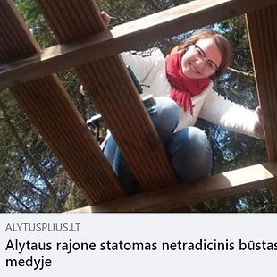alytusplius.JPG