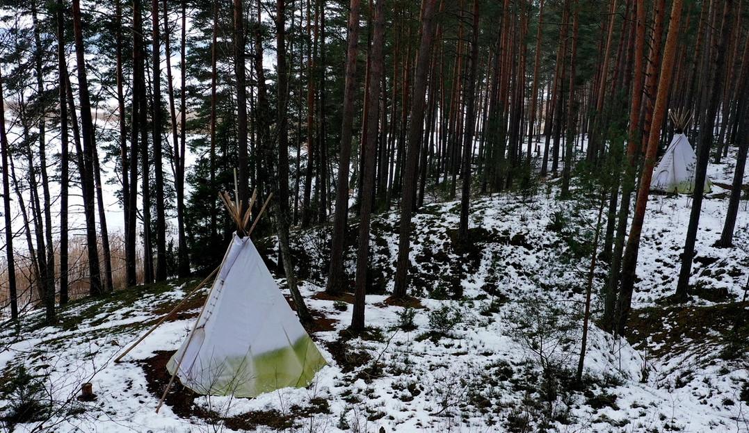 Asalnų tipiai - žiema