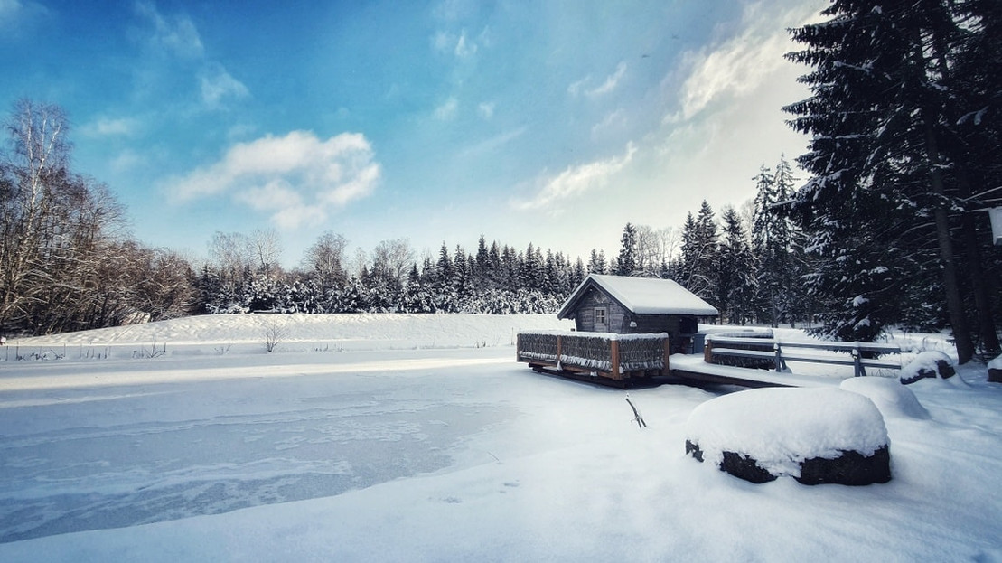 Miško rojaus namelis virš vandens - žiema