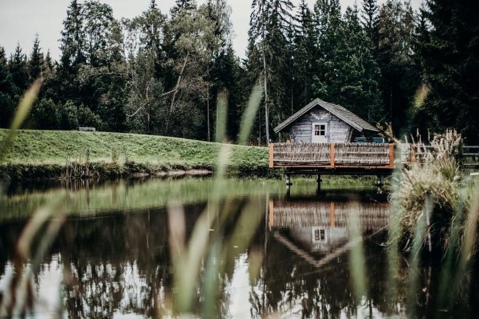 Miško rojaus namelis virš vandens