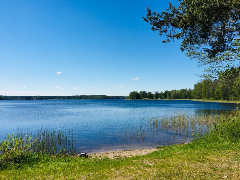 InWoods. Ežero pakrantė