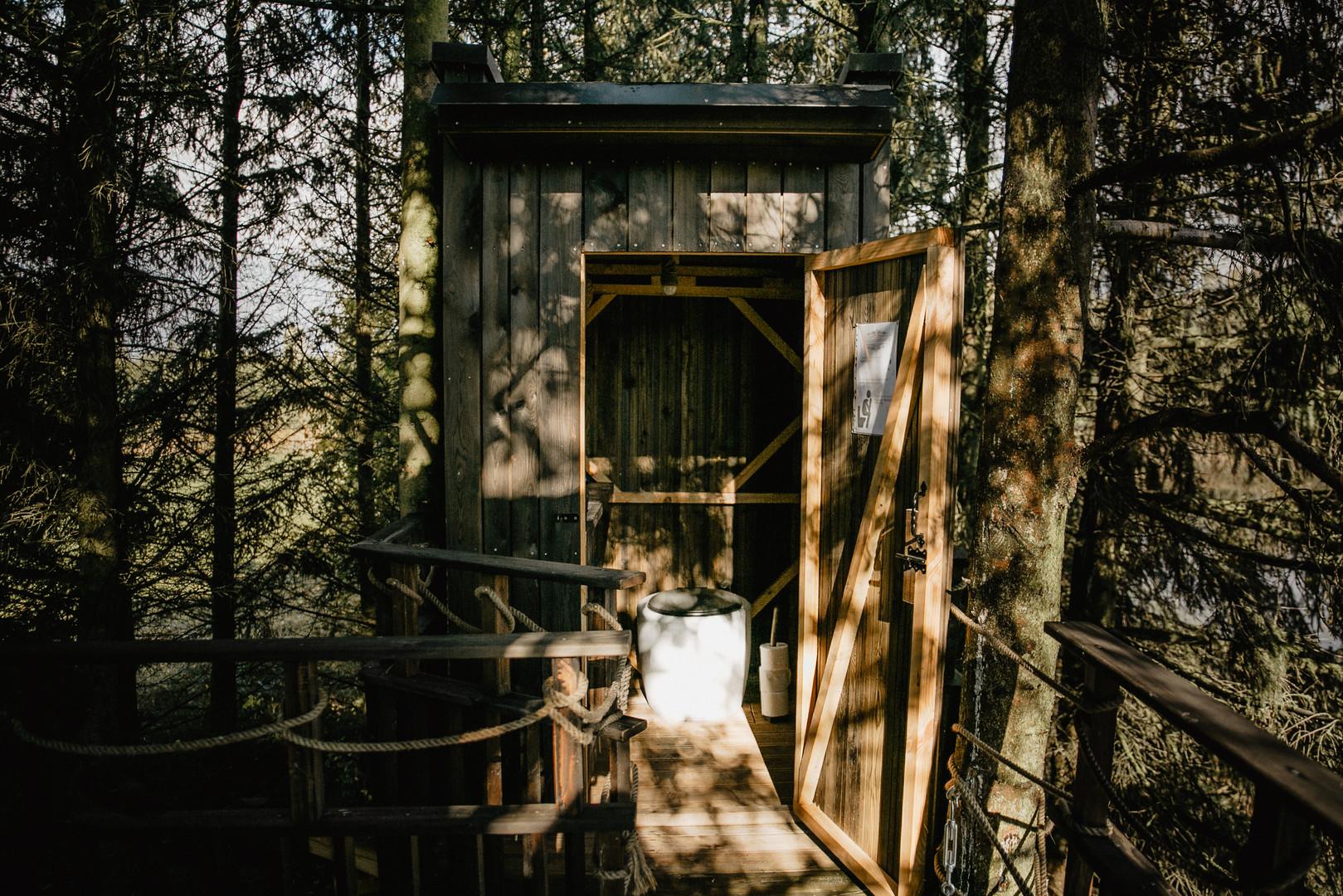 Paukščių namelis medyje - wc medyje