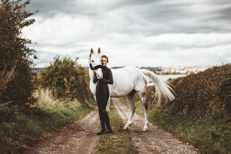 horse and equine photographer in sheffie
