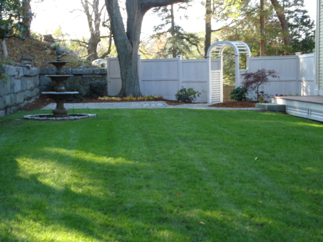 We create Lush Lawns