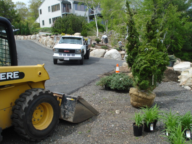 Site Preparation for a Beautiful Bed