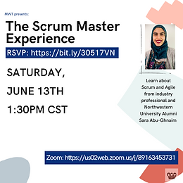 The Scrum Master Experience