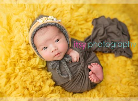 Babies of 2016 ~ DC, VA, MD Newborn Baby Family Photographer