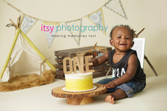 Maryland photographer, Dc photographer, silver spring photographer, Cake Smash, where the wild things are, boys,  ill eat you up i love you so, gold cake, first birthday, banner, tent, ombre cake , wood cake stand