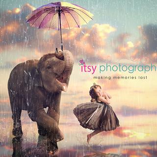 Elephant Dancing in the Rain Becca layer