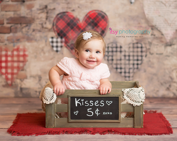 Cake smash, one year old girl, baby girl, baby photographer, newborn photographer, infant photographer,  plaid heart backdrop, doilies