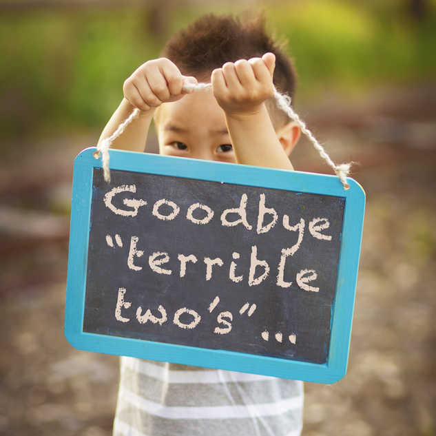 IMG_0849vint goodbye terrible 2smore con
