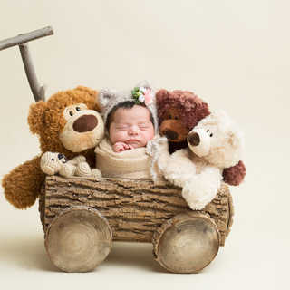 3G2B9394 cropped wagon stuffed bears.jpg