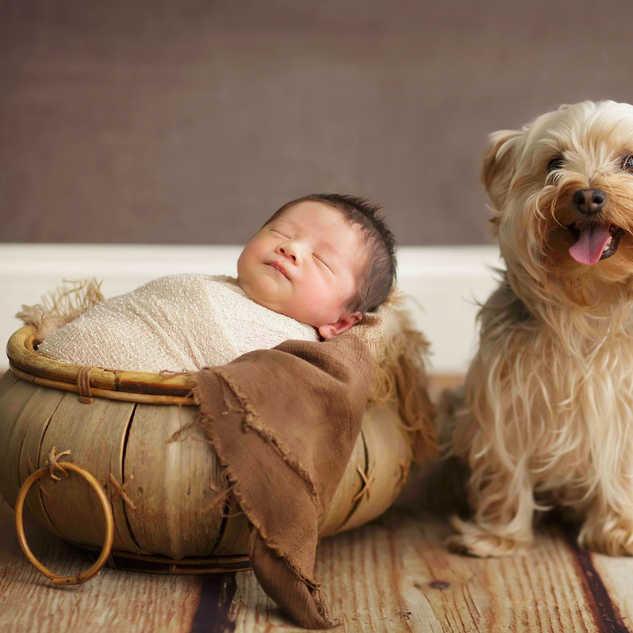 3789 baby boy newborn and puppy dog .jpg