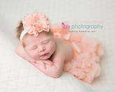 Newborn photographer, baby photography, infant photography, newborn girl, cream backdrop, pink tutu, bow, head on hands pose, newborn posing