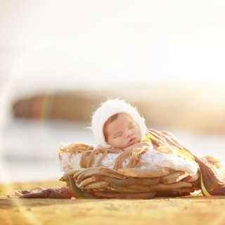 IMG_3060Beach Baby Driftwood Sunflare.jp