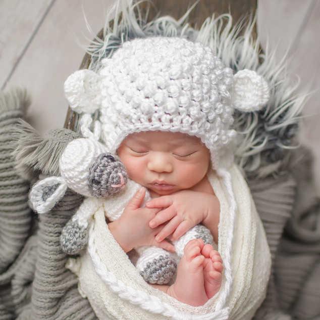 newborn and baby lamb photography.jpg