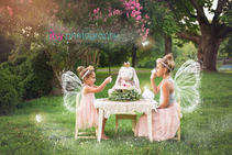 family photographer, tea party, outdoors, maternity , white maternity dress, golden hour, rabbit, Alice in wonderland, fairy, Photoshop, wings