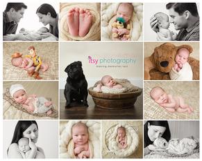 Newborn photographer, baby photography, infant photography, newborn boy,  Cream backdrop, teddy bear, cream blanket, tan bear, pug, dog, toy story, collage, family