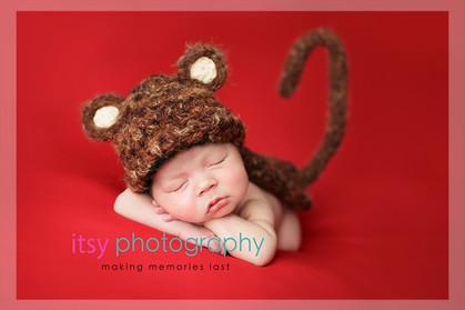 baby photographer, newborn photographer, infant photographer, dc photographer, new born, boy, girl, infant, baby, newborn posing ideas, baby wrapping, monkey, red backdrop