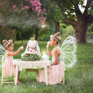 IMG_0205 sample 3 fairies.jpg