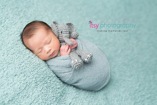 Newborn photographer, baby photography, infant photography, newborn bou, light blue backdrop, light blue wrap, baby wrapping, newborn posing ideas, elephant,