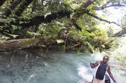 Riri River Boat Trip