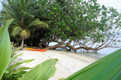 Your own private beach