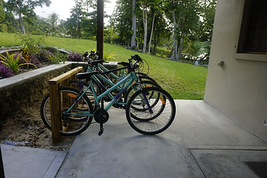 Bicycles in rack on Aoredise back verandah