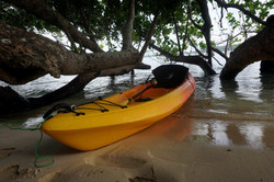 Park the Kayak in the shade
