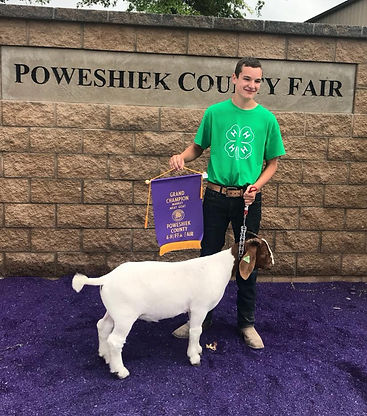 Poweshiek - Grand Champion.jpg