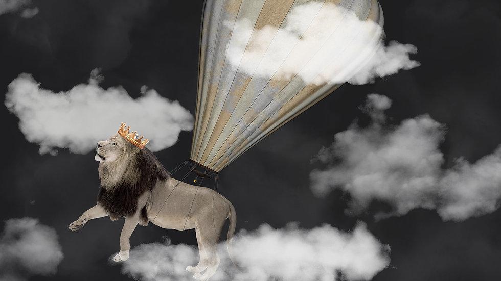 Startseite1920x1080_mehr BallonFIN.jpg
