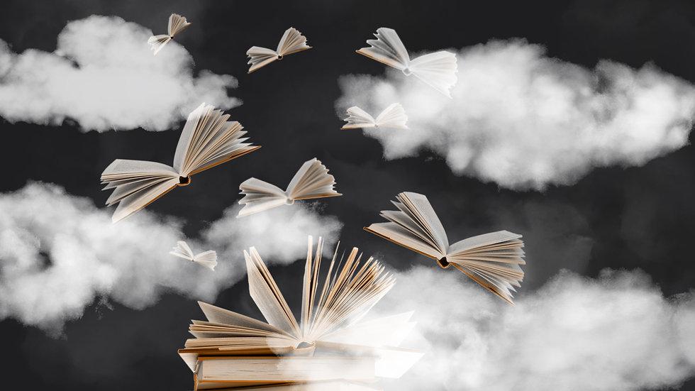Bücher1920x1080_Fin.jpg