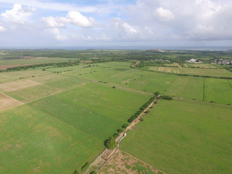 Reserva agrícola Vega Baja