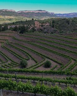 lavinoteca vinos_españoles tienda onlin