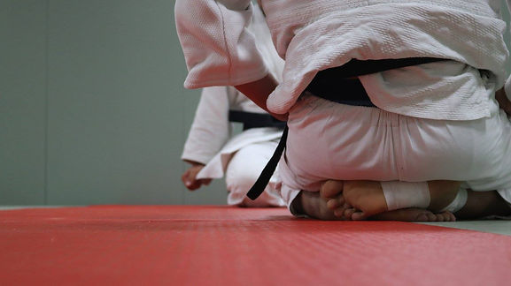 Sobell Judo Club London.jpg