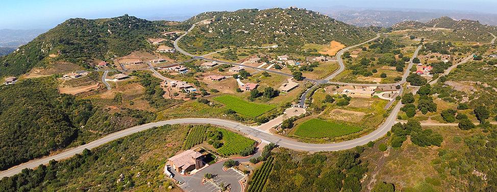 Aerial view of Trevi Hills Vineyard community.
