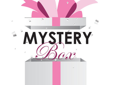The new Posh Puppy Mystery Box