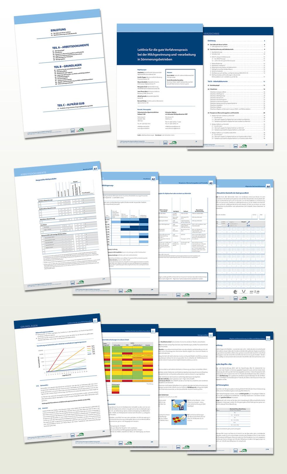 SAV_Branchenleitlinie_Inhalt.jpg