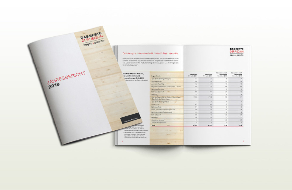 DBR_Jahresbericht19.jpg
