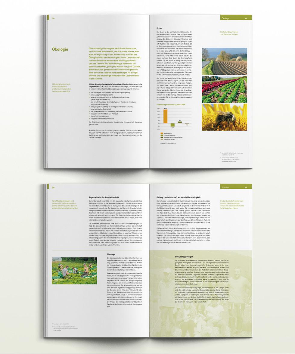 SBV_Nachhaltigkeitsbericht_Inhalt.jpg
