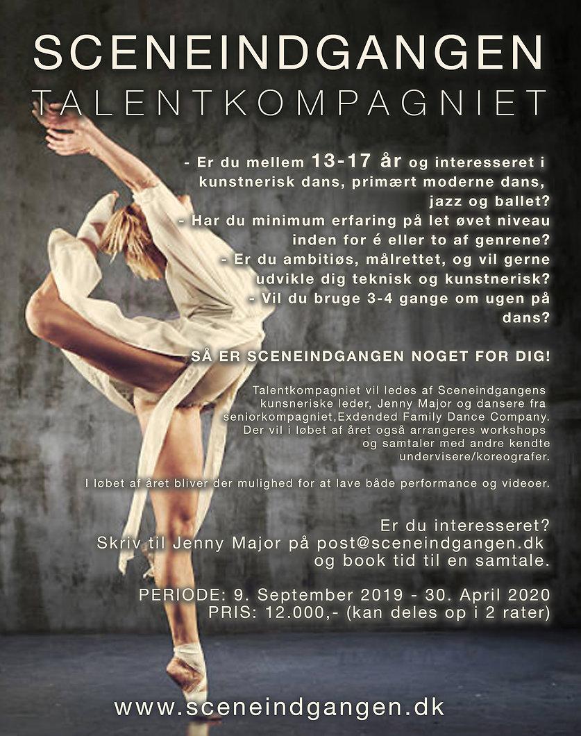 Talentkompagni_mørk_2.jpg