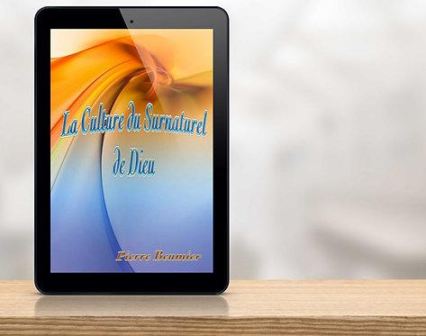 E-Book La culture du surnaturel