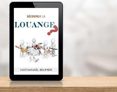 E-Book - 'Découvrir La Louange' Nathanaël Beumier