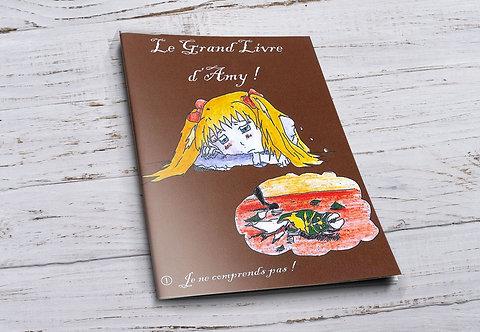 Le grand livre d'Amy 1 -Je ne Comprends pas!