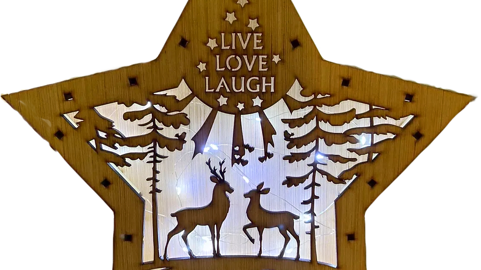 Star Light Box (Live Love Laugh with outdoor deer)