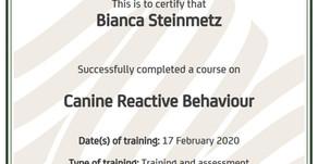 Canine Reactive Behaviour - Certified